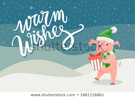 Piggy Warm Wishes and Merry Christmas Card Vector Stock photo © robuart