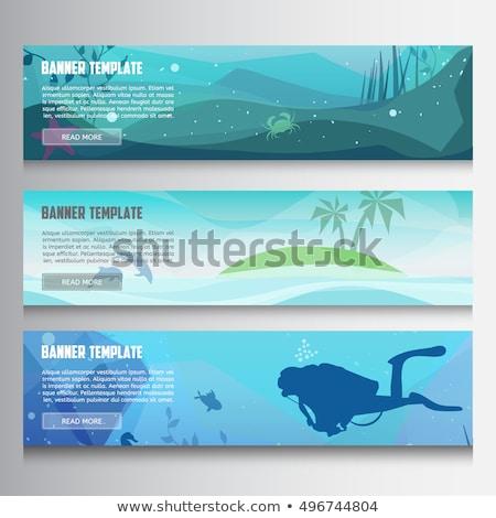 Ayarlamak farklı renkli sualtı su arka plan Stok fotoğraf © bluering