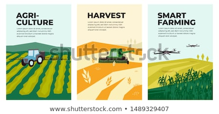 Tractor and Combine Set Poster Vector Illustration Stock photo © robuart