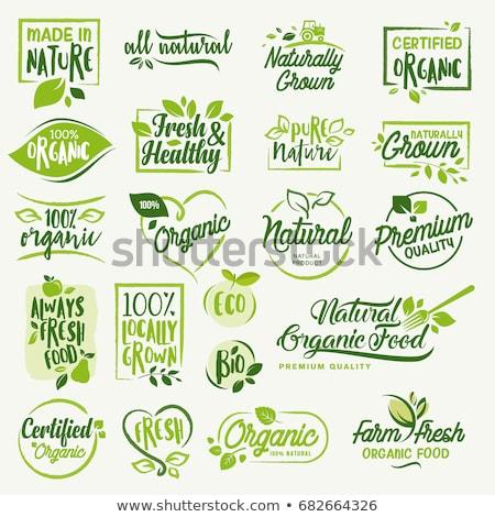 100 自然食品 ラベル ステッカー 葉 葉 ストックフォト © SArts