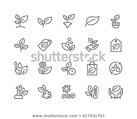 Stock photo: flower line icon set