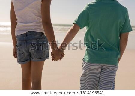 Középső rész testvérek kéz a kézben áll tengerpart napsütés Stock fotó © wavebreak_media