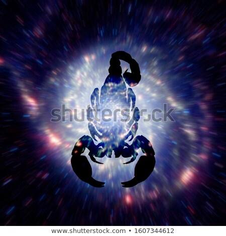 asztrológia · felirat · misztikus · aura · univerzum · mágikus - stock fotó © swillskill