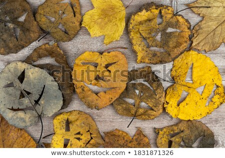 Background of dry autumn foliage, halloween faces on leaves and paintbrushes Stock photo © pressmaster