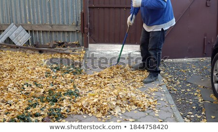 Man Sweeping Foliage by Broom, Autumn Weather Stock photo © robuart