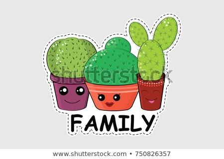Cactus familie sticker cartoon hot zomer Stockfoto © barsrsind