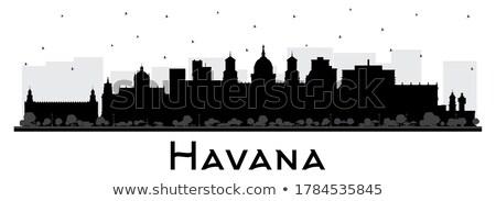 Hawana czarno białe sylwetka proste turystyki Zdjęcia stock © ShustrikS