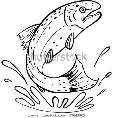 Forel vis springen retro zwart wit retro-stijl Stockfoto © patrimonio