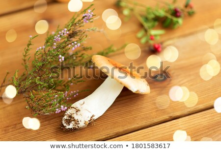 russule mushroom with heather on wooden background Stock photo © dolgachov