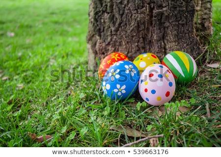 crescente · ovos · de · páscoa · rosa · estilizado · flores · páscoa - foto stock © zebra-finch