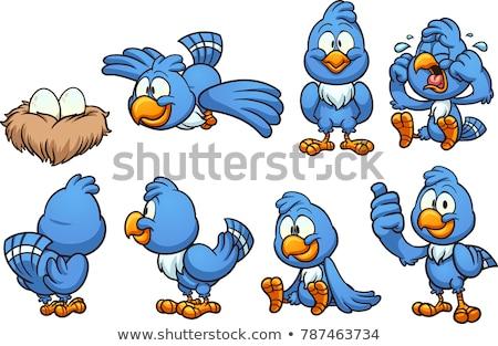 Karikatür kuş yaratıcı sanat dizayn sevimli Stok fotoğraf © indiwarm