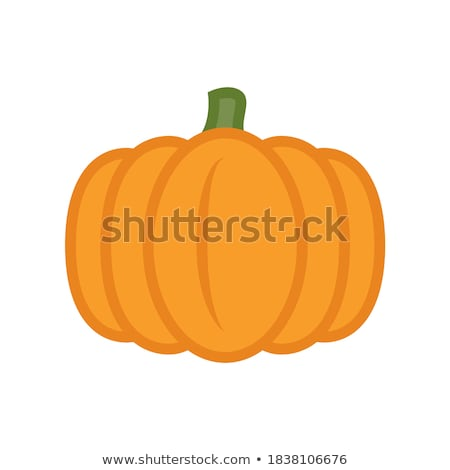 Vector Pumpkins on White Background Stock photo © indiwarm