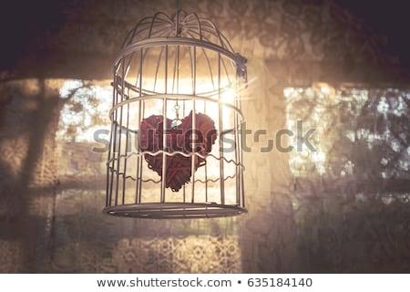 hart · gevangenis · venster · steen · wond · 3d · illustration - stockfoto © drizzd