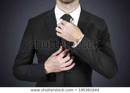 Tie correction on businessman Stock photo © Aikon