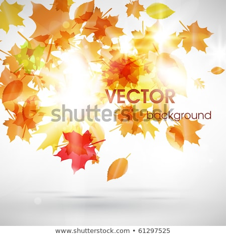 abstract vector background with fly leafs eps 10 illustration stock photo © articular