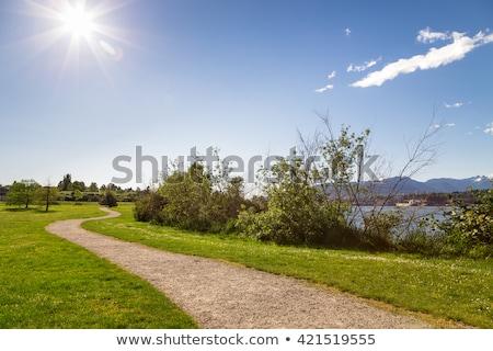 ösvény napos idő gyönyörű Stock fotó © cr8tivguy