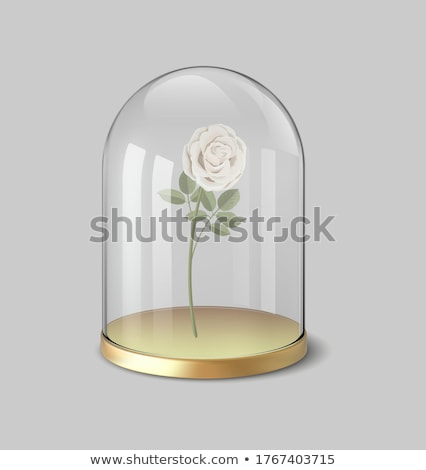 Glass flasks with white roses and pink petals Stock photo © wavebreak_media