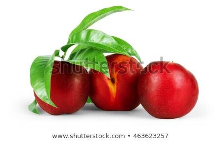 dos · hojas · verdes · blanco · alimentos · verano · mercado - foto stock © ozaiachin