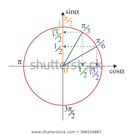Sinus circle stock photo © rwittich