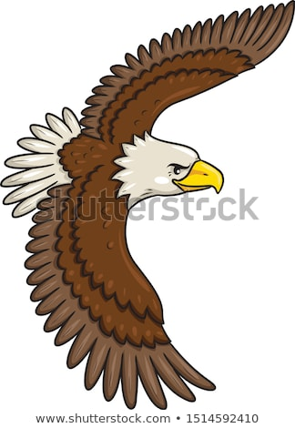 Eagle flying cartoon Stock photo © hayaship
