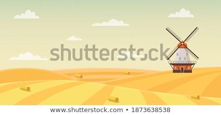 Grand hélice vieux bois moulin à vent ciel Photo stock © borysshevchuk