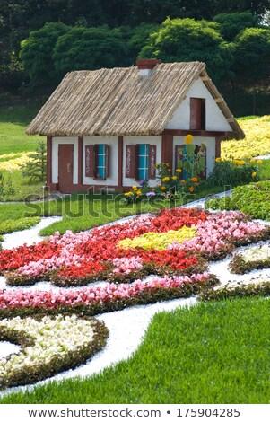 Masal kulübe Ukrayna şarkı söyleme alan çiçekler Stok fotoğraf © grechka333