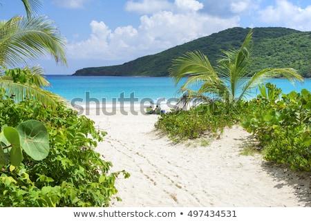 フラメンコ ビーチ ゴージャス 白砂 島 ストックフォト © ArenaCreative