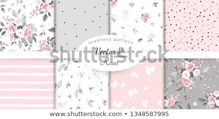 Rosa vetor vintage flores folhas Foto stock © Coffeechocolates