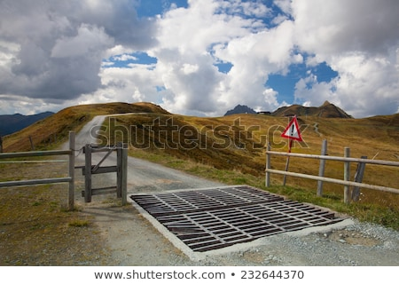 Cattle Guard in the Tyrolean mountains,Austria Stock photo © CaptureLight