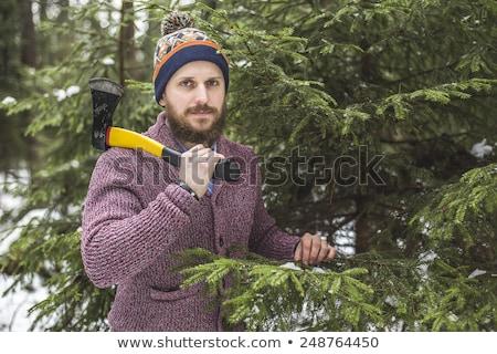 木こり クリスマスツリー 森林 あごひげ 斧 ストックフォト © Kor