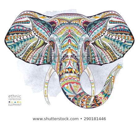 elefante · cabeça · étnico · ornamento · abstrato · arte - foto stock © ulyankin