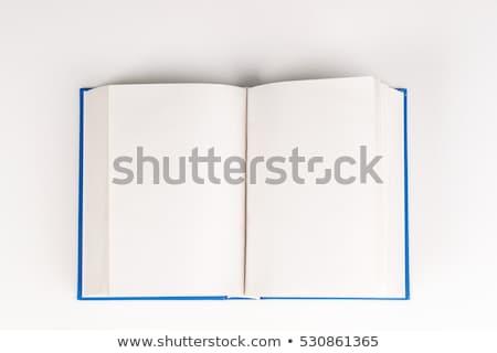青 開いた本 ブックマーク 実例 ベクトル フォーマット ストックフォト © orensila