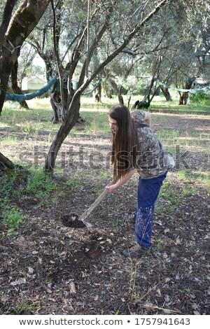 dziewczyna · łopata · ogród · szczęścia · stałego · fotografii - zdjęcia stock © fotoyou