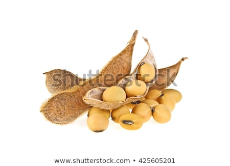 Ripe Soy Beans as Background Stock photo © stevanovicigor