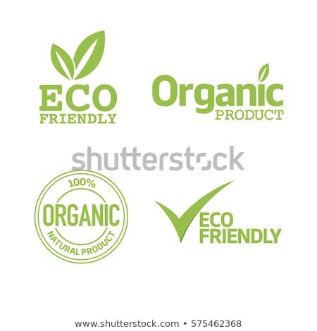 green eco friendly labels stock photo © vadimone