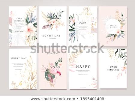 Foto stock: Flor · cartão · conjunto · vetor · moderno