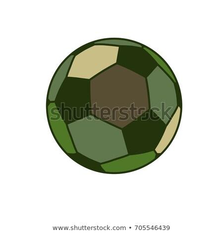 軍事 スポーツ ボール 軍 スポーツ ゲーム ストックフォト © MaryValery