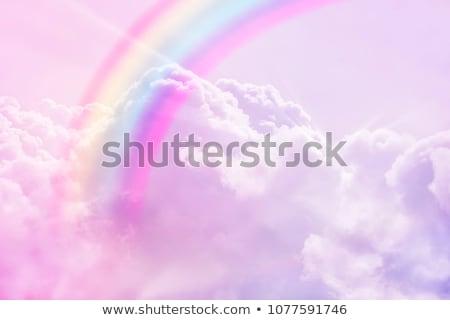 jelenet · színes · szivárvány · illusztráció · tájkép · kert - stock fotó © bluering
