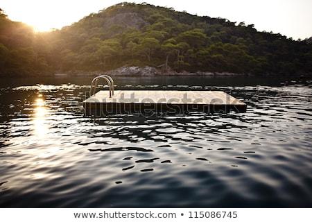 Zwemmen vlot meer hout bomen Stockfoto © brianguest