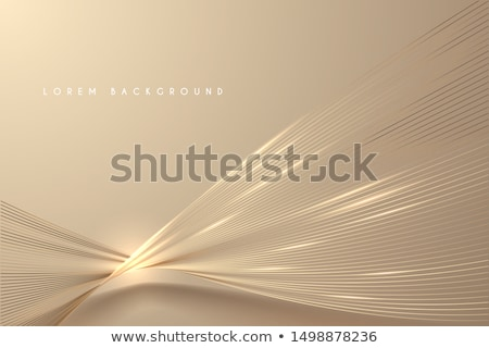 Gold Colorful lines  vector abstract background stock photo © fresh_5265954