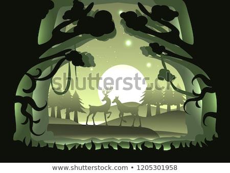 luar · ilustração · lua · silhueta · fantasia · mamífero - foto stock © adrenalina