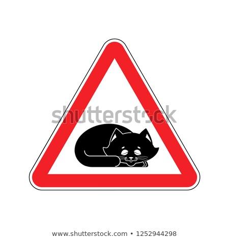 Atención dormir gato precaución mascota rojo Foto stock © popaukropa