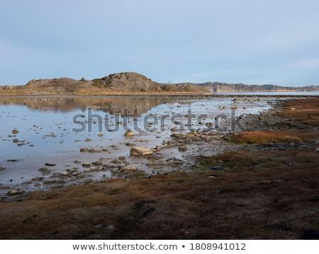 ストックフォト: 海 · 海岸線 · 冷たい · 石 · バルト海 · カバー