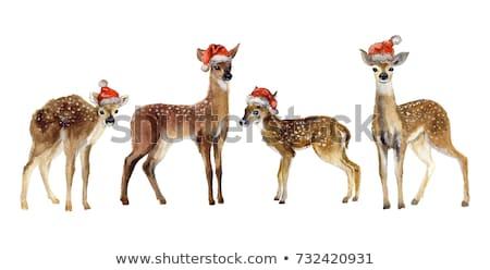 Stockfoto: Silhouet · baby · kerstman · vorm · klein · kind