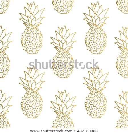 Végtelenített ananász eps10 absztrakt természet terv Stock fotó © ekzarkho