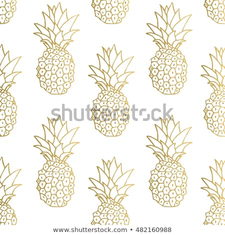 naadloos · ananas · eps10 · abstract · natuur · ontwerp - stockfoto © ekzarkho