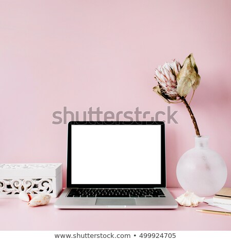 modern girly workplace with laptop Stock photo © LightFieldStudios