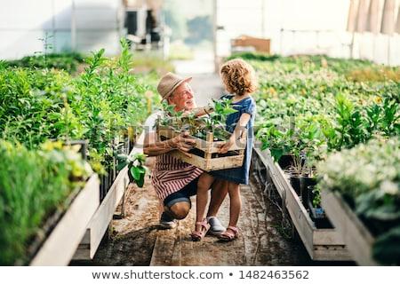 Family at garden center Stock photo © IS2