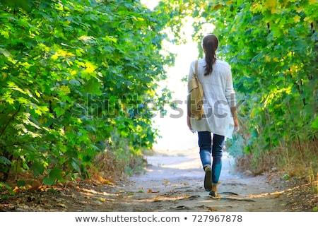 nő · kirándulás · ősz · hegyek · erdő · természetjáró - stock fotó © blasbike