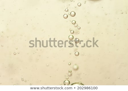 elegante · vidrio · amarillo · champán · burbujas · mármol - foto stock © denismart